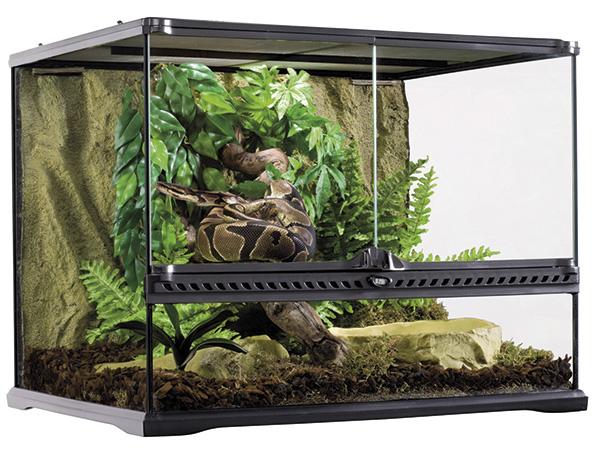 bien choisir son terrarium clinique v t rinaire de l 39 a rodrome. Black Bedroom Furniture Sets. Home Design Ideas